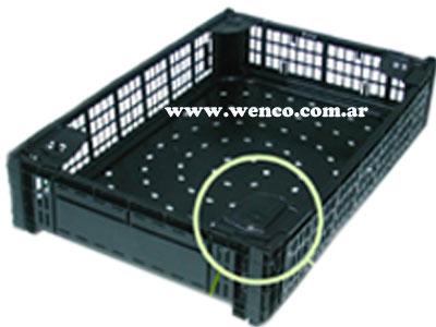 22-cajas-de-plastico-exportacion-frutas