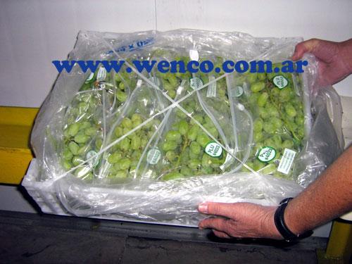 30-cajas-plasticas-exportacion