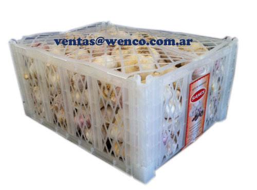 02-nueva-cajas-plasticas-exportacion-ajo